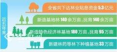 云南:利用贴息贷款政策盘活全省林业资源