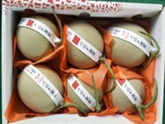 海阳网纹瓜专业代办,上万亩产地大型批发市场