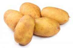 -出售库存马铃薯种子及商品薯