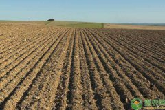 河北农业补贴项目有哪些?河北农民赶紧看看!