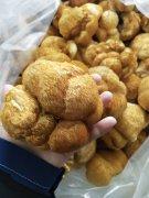 中国猴头菇之乡 产地批发猴头菇