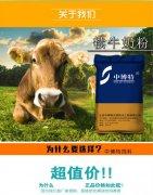 -小牛犊奶粉代乳粉防腹泻拉稀