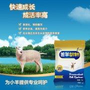 -小羊羔吃的奶粉代乳粉