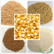 -收购最新玉米5000吨